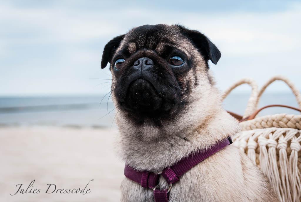 Urlaubsfeeling : mit Korbtasche Coco am Strand