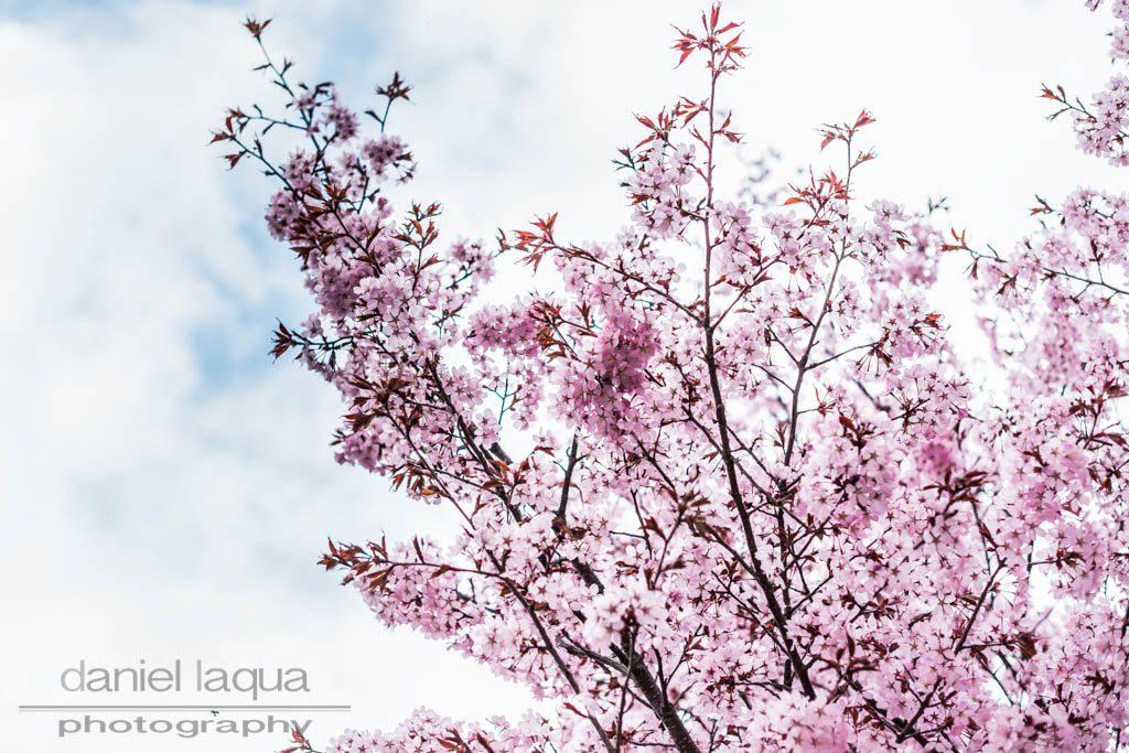 Spring Shades Endlich Frühling Julies Dresscode