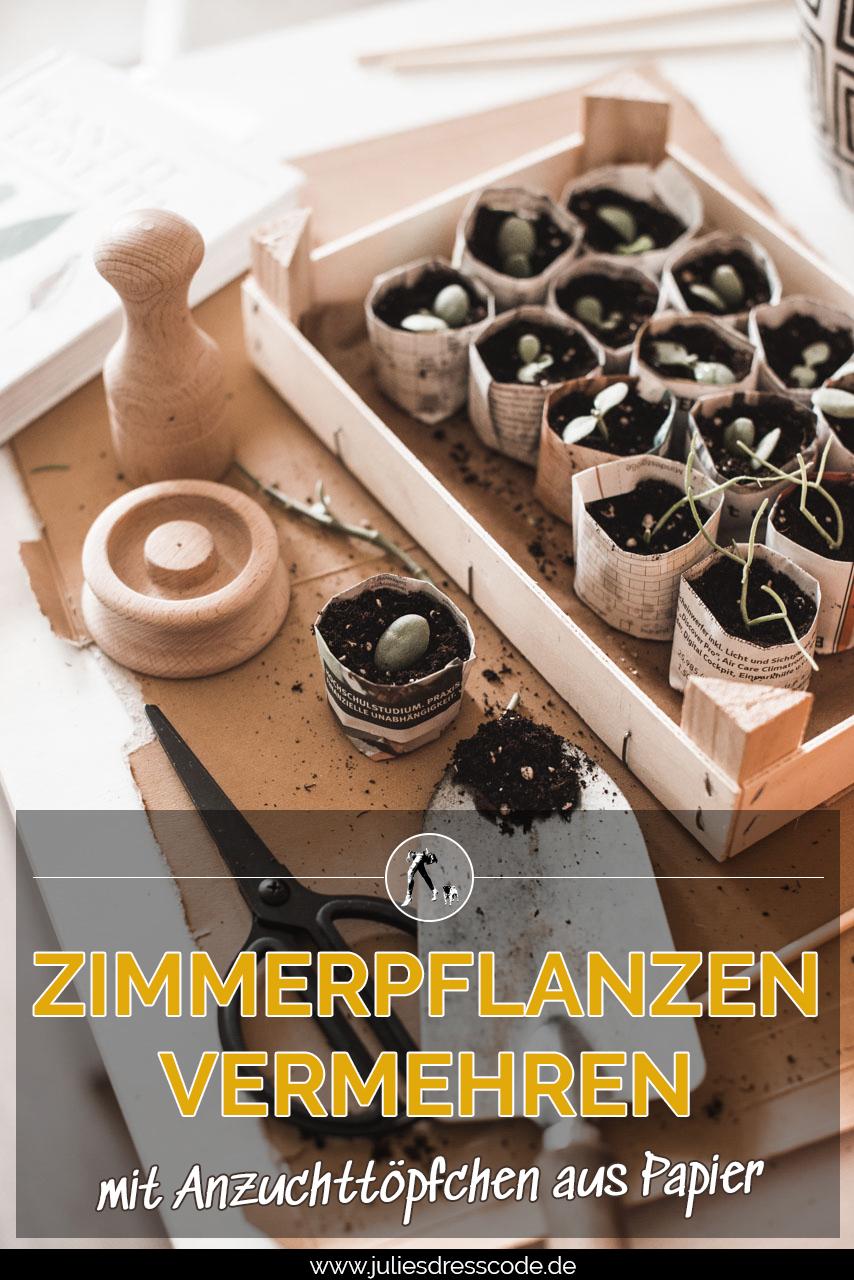 ZimmerpflanzenVermehrenPin